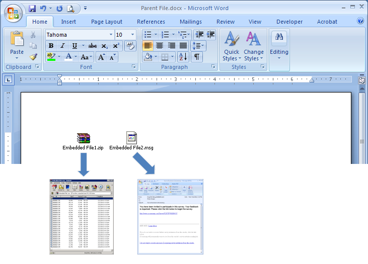 Word Document with Embedded Objects
