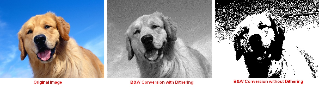 B&W Conversion and Dithering